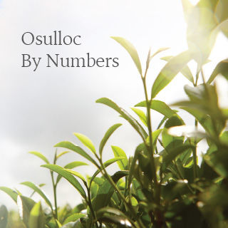 Osulloc by numbers
